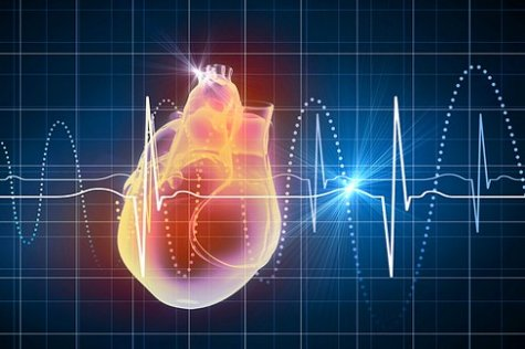 Los secretos para mantener en buen estado del corazón