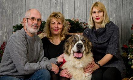 Celebraciones familiares en Navidad