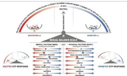 Modelo de inflexión sexual de Perelman